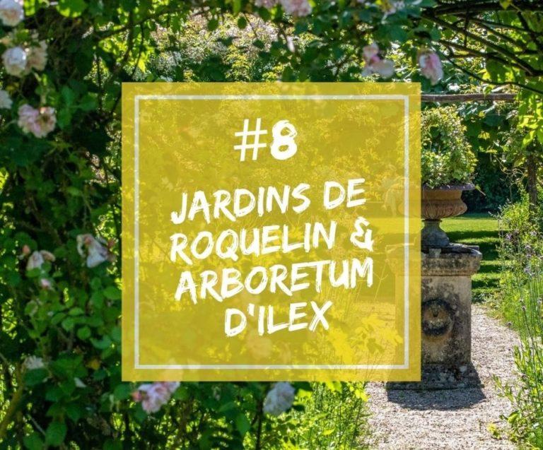 Podcast | Épisode 8 – Stéphane Chassine, propriétaire des Jardins de Roquelin et de l'Arboretum d'Ilex