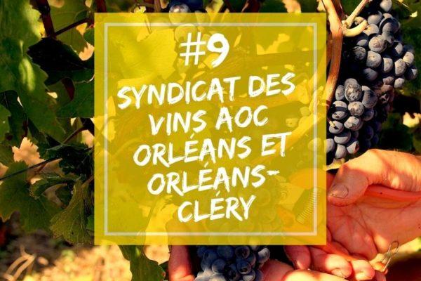 Podcast | Épisode 9 – Valérie Deneufbourg, présidente du Syndicat des Vins AOC Orléans et Orléans-Cléry